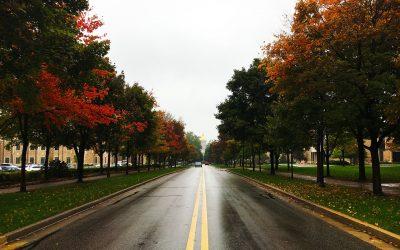 Mire figyeljünk ősszel vezetéskor?